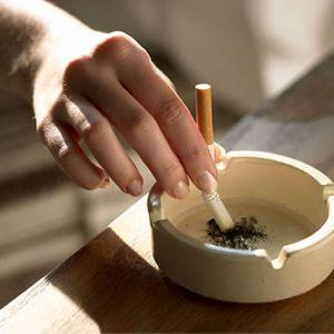 Skóra palaczy